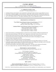 Special Education Instructional Assistant Sample Resume Resume Special Education Teacher Assistant Resume 19