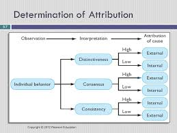 Chapter 5 Individual Perception And Decision Making Ppt