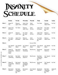 insanity schedule free