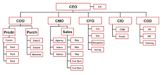 Coo Org Chart Unfolded Coo Organizational Chart 2019