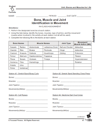 Pe Worksheets For Middle School Free Worksheets Library | Download ...