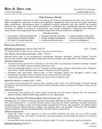 resume sample chief financial officer page 1 best executive resume format