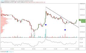 Bitcoin Litecoin Ethereum Charts Cryptocurrencies Price Prediction Bitcoin Litecoin