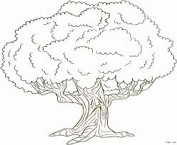 coloring pages of tree. Delighful Pages Coloring Pages For Trees Best Of Tree  Coloring  Pages Of In N