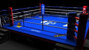 Risultati immagini per Ring boxe