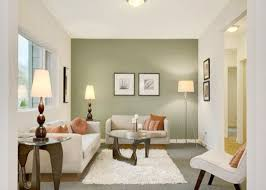 accent wall paint ideasGood Accent Wall Colors Living Room Living Room Wall Colors Ideas