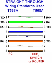 cat 5 colour code standards Category 5 Wiring Diagram Straight Ethernet Cable Cat