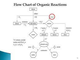 Unfolded Chemical Flowchart Flow Chart Differentiating E1 E2
