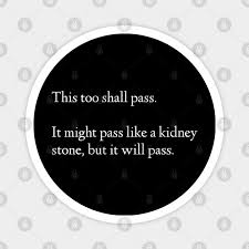 'ever have one of those days when you can't tell a gall stone from a kidney stone?' categories: This Too Shall Pass It Might Pass Like A Kidney Stone But It Will Pass Humor Magnet Teepublic