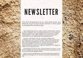 13 newsletter templates examples lucidpress terra cotta digital newsletter template