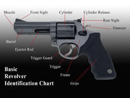 Gun Identification Chart Selecting A Firearm Peak Prosperity