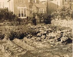 Wartime Kitchen And Garden Victory Gardens Grow Appalachia Grow Appalachia