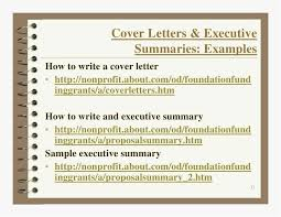 Cv Writing Services Free 32 Inspiring Professional Cv And Cover Letter Writing Service At