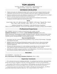 Monster Sample Resume For Midlevel It Developer Com Combination
