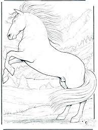 Horses Coloring Page Horse Coloring Sheets Online Zatushokinfo