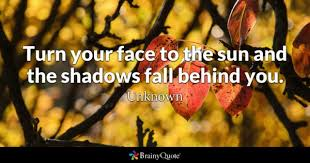 The Sun Also Rises Quotes Custom Shadows Quotes BrainyQuote