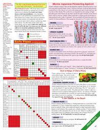 Japanese Plum Pollination Chart Raintree Nursery 2012 Catalog By The Chronicle Issuu