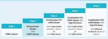 40 Steroid Conversion Chart Kivan Yellowriverwebsites Com