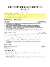 Example Of Profile Section Of Resume