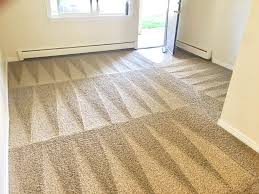 steam cleaning carpets over hardwood floors
