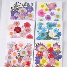 Flower Pressed Paper Us 2 87 19 Off 1 Lot Mix Flower Pressed Dried Flower Dry Leaves Plants For Epoxy Resin Pendant Necklace Jewelry Making Craft Diy Accessories In