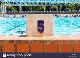 swimming pool lane number 5 stock image