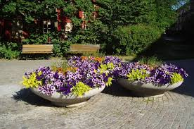 container gardening for beginners. Creative Container Gardening For Beginners T