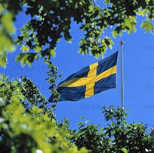 Bildresultat för bilder på svenska flaggan