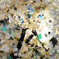 essay on marine life essay on plastic harm the environment custom paper academic service destruction marine life essay