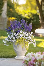 Small Picture 103 best Container Garden Recipes images on Pinterest Flower