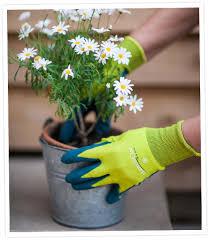 las gardening gloves