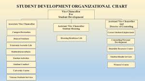 Personal Organizational Chart Student Development Organizational Chart Ppt Video Online