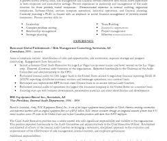Outstanding Internal Auditor Resume Summary Illustration