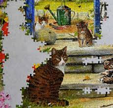 30 new pictures of cat puzzle rug