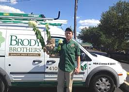 brothers pest control. Perfect Brothers Baltimore Pest Control Company Brody Brothers Pest Control Intended N