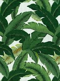 tommy bahama wallpaper like this item tommy bahama wallpaper book