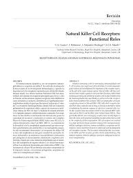 the natural world essay new