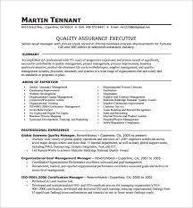 One Page Resume Template Custom Page Resume Example One Page Resume Examples On Example Of A Resume
