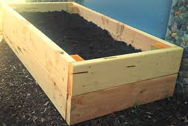 Small Picture Top 2 Designs for Easy to Build Juniper Raised Beds
