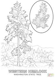 State Of Texas Coloring Page - Eliolera.com