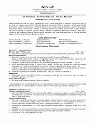 Examples Of Simple Resumes Best Of Recruiter Resume Template