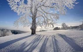 Winter Desktop Wallpapers - Top Free ...