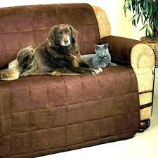 dog proof couch covers dog proof couch best couch covers for dogs pet cover for leather