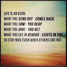 Life Is An Echo Quote