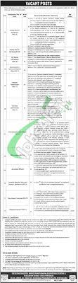 etea jobs application form online etea edu pk type in google search etea jobs