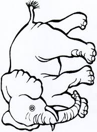 Small Picture Coloring Pictures Of Jungle Animals Coloring Pages