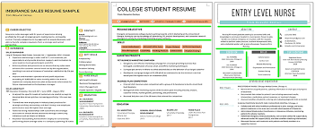 Resume Complete Example Of Complete Resume Magdalene Project Org