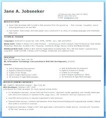 Web Developer Resume Objective Example Career Professional Examples