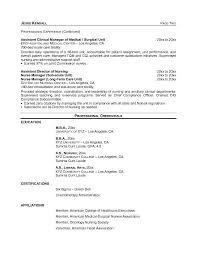 free nursing service director resume example