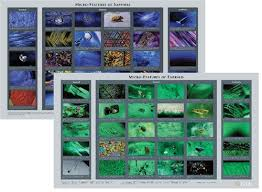 Micro Features Of Emerald And Sapphire Chart